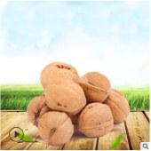 一件代发新疆核桃 休闲零食坚果批发新疆特产 薄皮核桃非纸皮